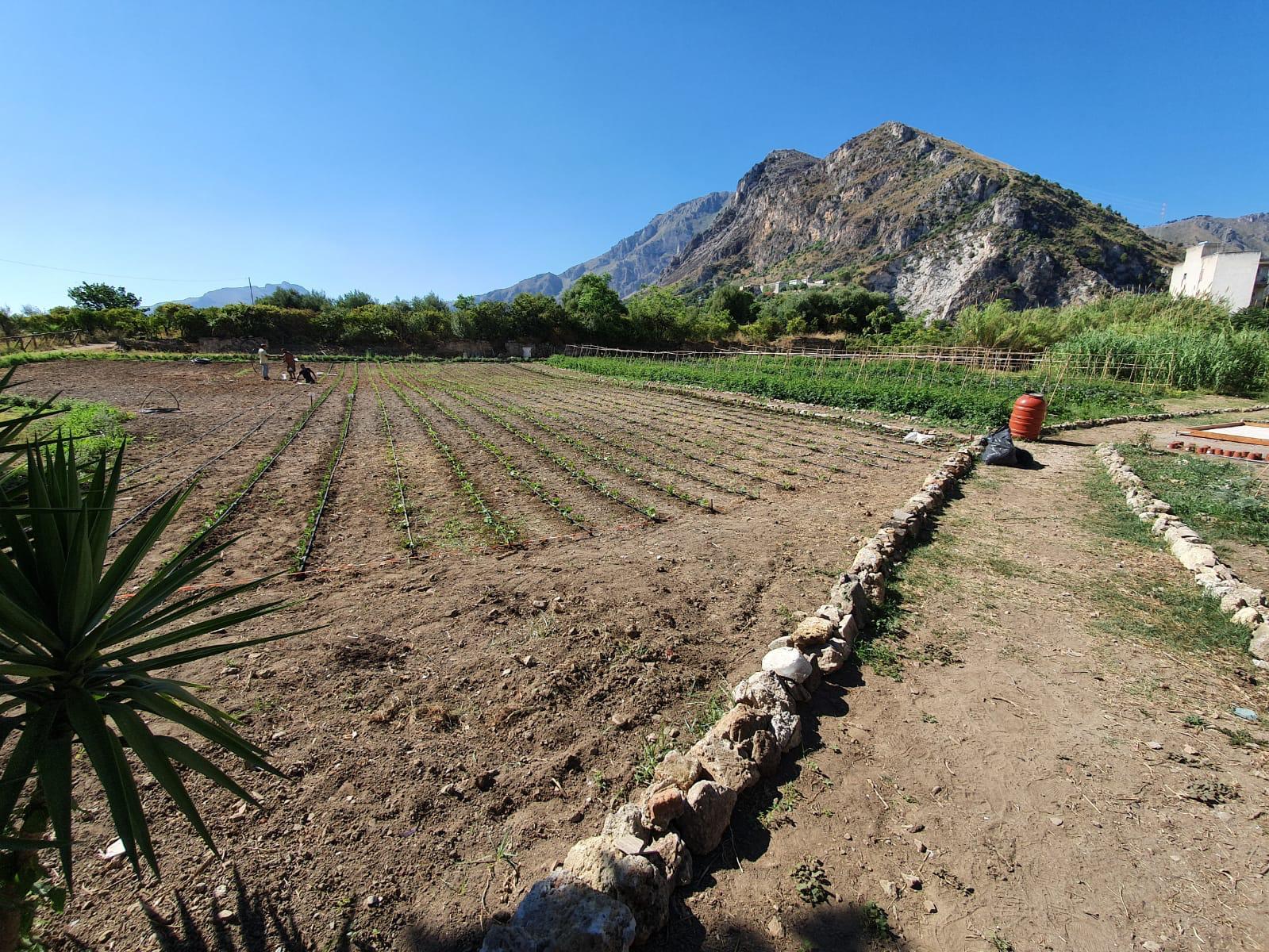 Il ruolo dei Beni Sociali e Culturali per lo sviluppo del territorio e  la valorizzazione del Parco antico di Maredolce, un seminario a Palermo